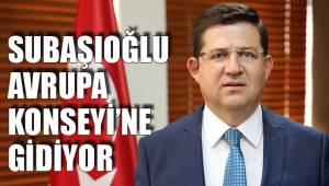 SUBAŞIOĞLU AVRUPA KONSEYİ'NE GİDİYOR