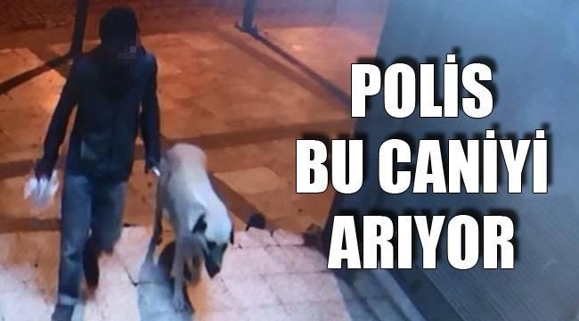 POLİS BU CANİYİ ARIYOR