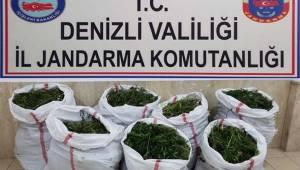 Buldan'da; 37 kilo 250 gram esrarı jandarma buldu