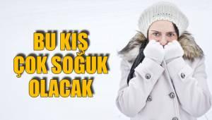 Bu kış çok soğuk olacak