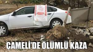 Çameli'de ölümlü kaza