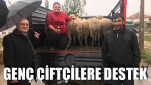 Çiftçilere 132 baş hayvan dağıtıldı