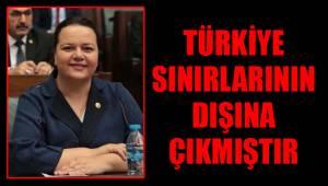 Türkiye sınırlarının dışına çıkmıştır