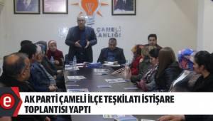 AK Parti Çameli İlçe Teşkilatı İstişare Toplantısı Yaptı