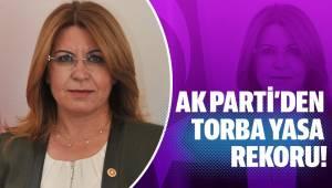 AK PARTİ'DEN TORBA YASA REKORU