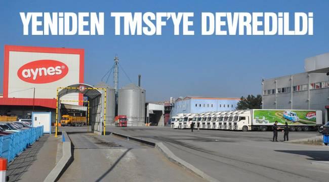 Aynes yeniden TMSF'ye devredildi