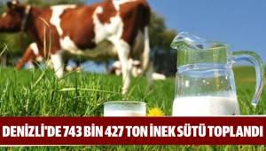 743 bin 427 ton inek sütü toplandı