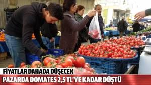 Pazarda domates 2.5 TL'ye kadar düştü
