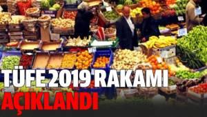 Tüketici Fiyat Endeksi, Şubat 2019