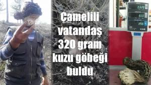 Çamelili vatandaş 320 gram kuzu göbeği buldu
