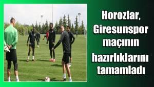 Horozlar, Giresunspor maçının hazırlıklarını tamamladı