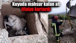 Kuyuda mahsur kalan atı itfaiye kurtardı