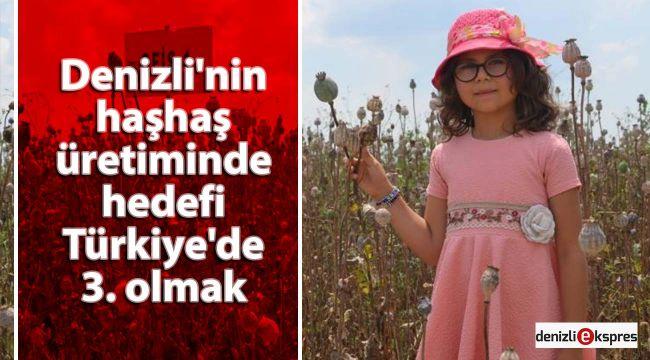 Denizli'nin haşhaş üretiminde hedefi Türkiye'de 3. olmak