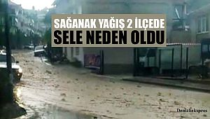 Sağanak yağış 2 ilçede sele neden oldu