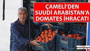 Çameli'den Suudi Arabistan'a domates ihracatı