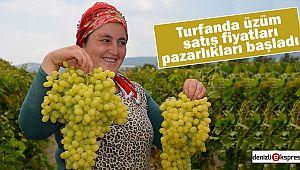 Turfanda üzüm satış fiyatları pazarlıkları başladı