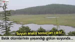 Balık ölümlerinin yaşandığı gölün suyunda...