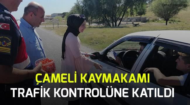 Çameli Kaymakamı Jandarma ile birlikte trafik denetimine katıldı.