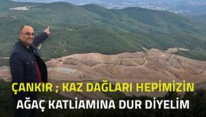 Çankır; Kaz Dağları'ndaki ağaç katliamına dur diyelim