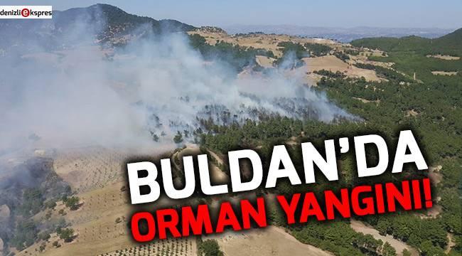 Buldan'da orman yangını!