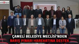 Çameli Belediye Meclisi'nden Barış Pınarı Harekatına destek