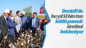 Denizli'de bu yıl 51 bin ton kütlü pamuk üretimi bekleniyor