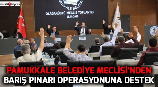 Pamukkale Belediye Meclisi'nden Barış Pınarı operasyonuna destek
