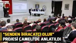 """""""Senden İhracatçı Olur"""" Projesi Çameli'de anlatıldı"""