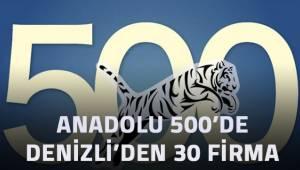 ANADOLU 500'DE DENİZLİ'DEN 30 FİRMA