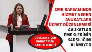 Gülizar Biçer Karaca'dan kanun teklifi