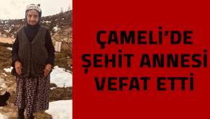 Çameli'de şehit annesi vefat etti