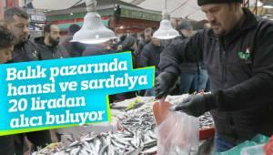 Balık pazarında hamsi ve sardalya 20 liradan alıcı buluyor