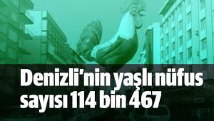 Denizli'nin yaşlı nüfus sayısı 114 bin 467