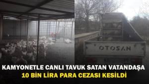 Kamyonetle canlı tavuk satan şahsa 10 bin TL para cezası kesildi