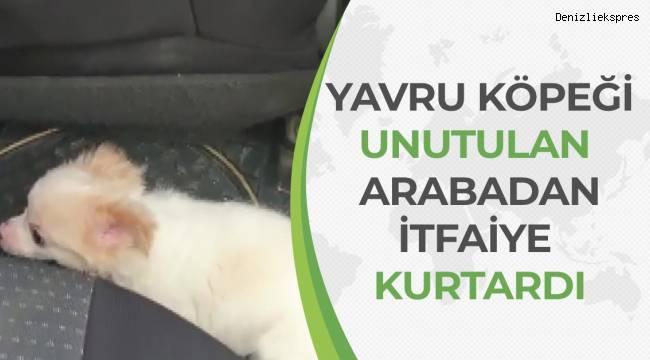 Otomobilde mahsur kalan yavru köpeği itfaiye kurtardı
