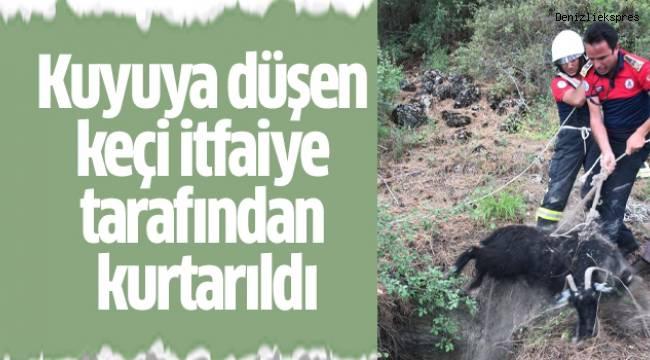 Kuyuya düşen keçi itfaiye tarafından kurtarıldı
