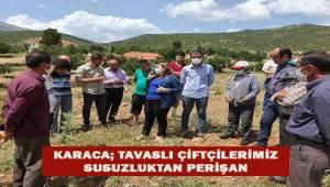 Tavas'lı çiftçiler susuzluktan perişan