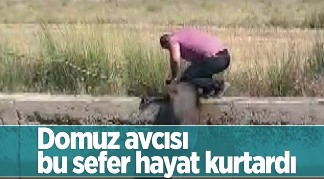 Domuz avcısı bu sefer hayat kurtardı