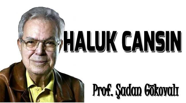 HALUK CANSIN