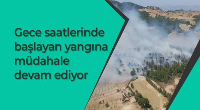 Gece saatlerinde başlayan yangına müdahale devam ediyor