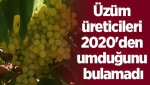 Üzüm üreticileri 2020'den umduğunu bulamadı