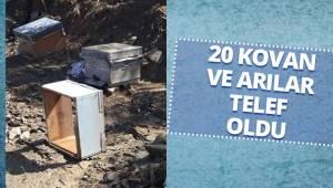 Denizli'de etkili olan sağanak arıcılık yapan vatandaşı mağdur etti