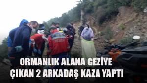 Arazi aracı ile ormanlık alanda geziye çıkan 2 arkadaş kaza yaptı