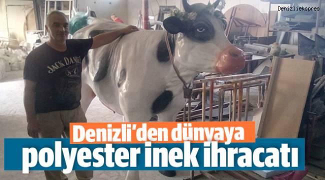 Denizli'den dünyaya polyester inek ihracatı