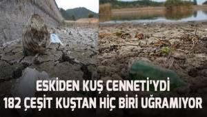 Koruma altında olan Süleymanlı Gölü kurudu. Gölden çıkanlar insanları hayretler içinde bıraktı.