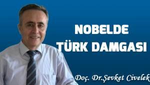 Nobelde Türk Damgası