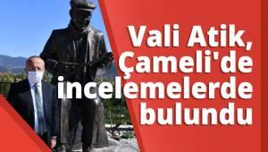 Vali Ali Fuat Atik, Çameli'de incelemelerde bulundu