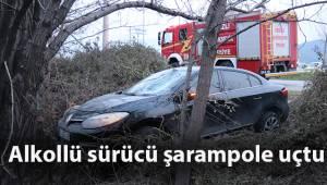 Alkollü sürücü direksiyon hakimiyetini kaybedince şarampole uçtu