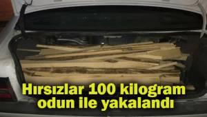 Hırsızlar 100 kilogram odun ile yakalandı