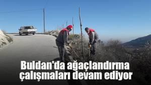 Buldan'da ağaçlandırma çalışmaları devam ediyor